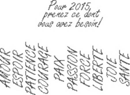 2015 Voeux